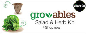 Groables Salad and Herb Kit