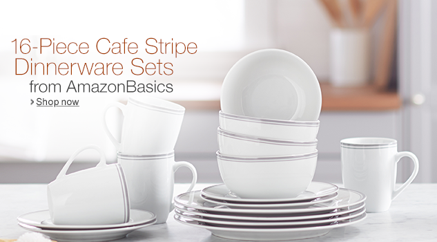 Amazon Basics Dinnerware