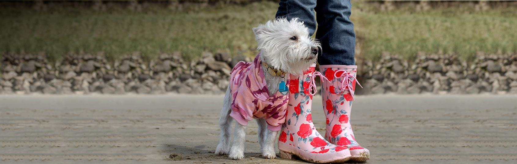Dog Coats For Sale Amazon