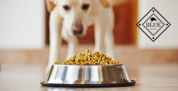 Healthy, natural dog food from Blue Buffalo