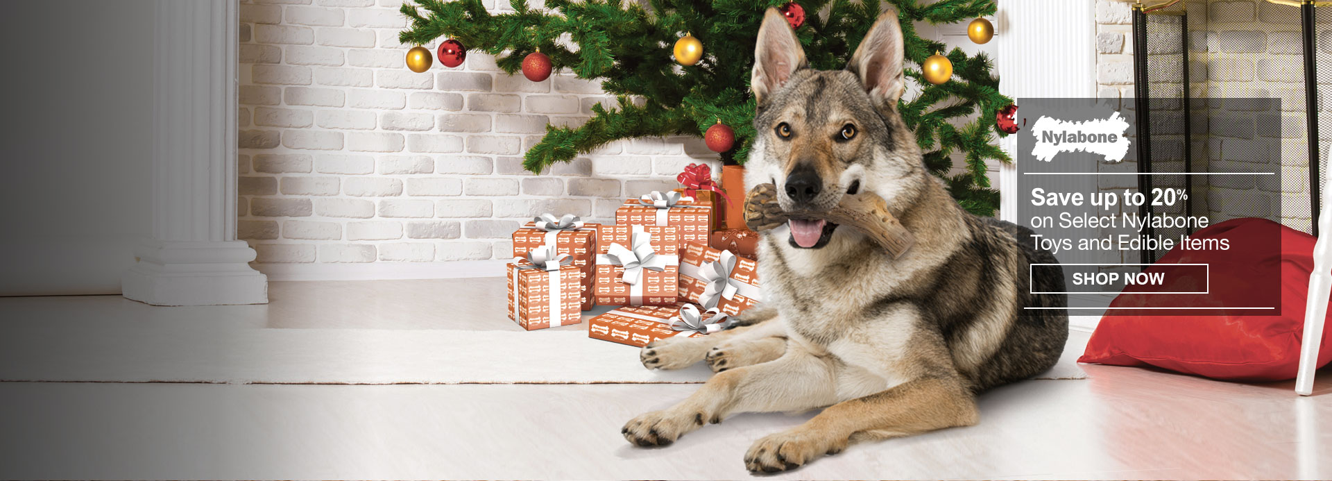 Nylabone Holiday Deals