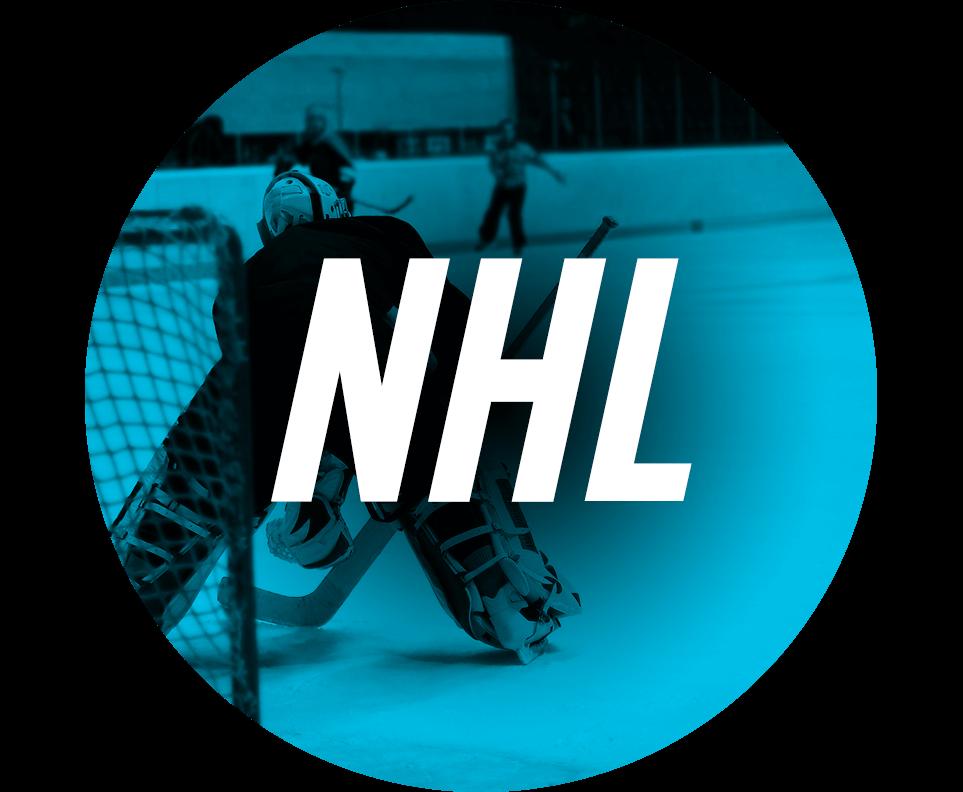 NHL Fan Shop