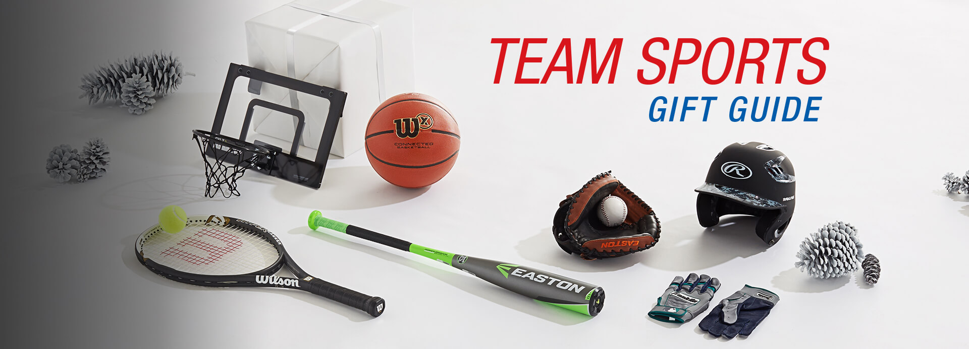 Team Sports Gift Guide