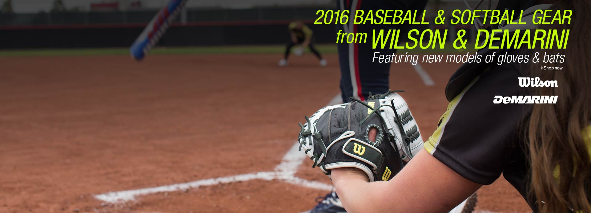Wilson & DeMarini 2016 Baseball