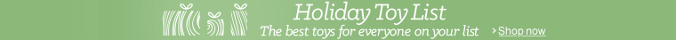 2015 Holiday Toy List