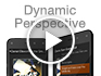 Dynamic Perspective