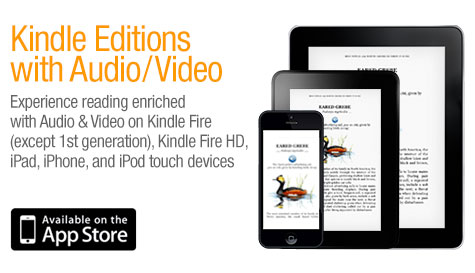 Kindle Editions with Audio and Video