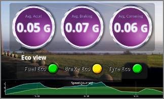 Eco view tracks your acceleration, braking, and cornering