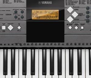 Yamaha Ypt Record