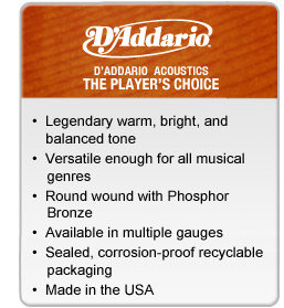 D'Addario - The Player's Choice