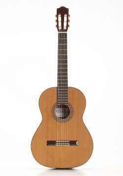 Amazon.com: Cordoba 45R Acoustic Nylon String Classical ...