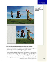 Photoshop CS4, page 243
