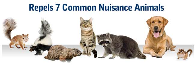 Repels 7 common nuisance animals