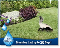 Granulars Last up to 30 Days!