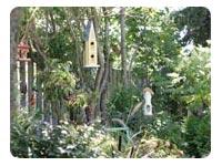 Backyard habitat