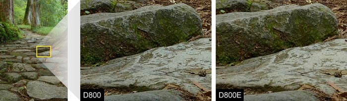 D800/D800E Resolution Comparison