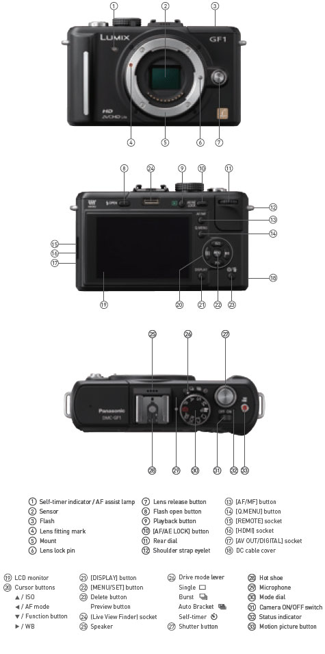 Panasonic GF1 highlights