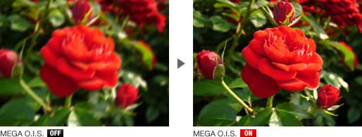 MEGA O.I.S. Sample Image