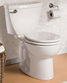 Cadet 3 Flowise toilet
