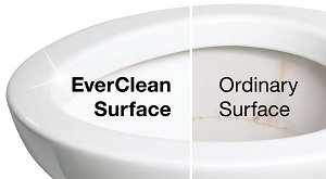 Champion 4 Everclean surface