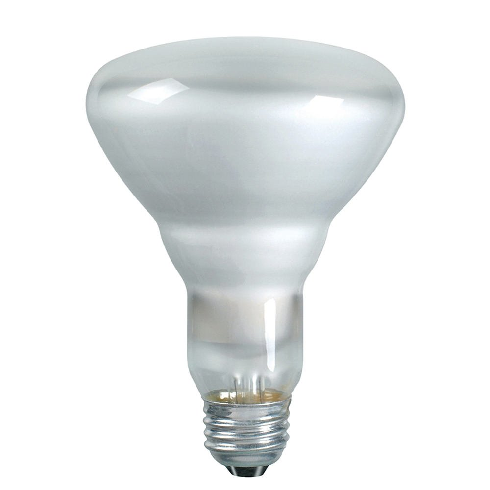 Philips 387795 soft white 65 watt br40 indoor flood light bulb 12 pack ebay Light bulb wattage