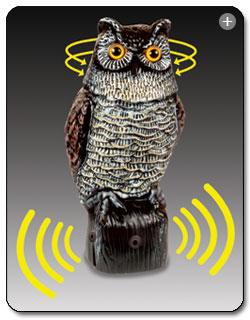 Easy Gardener 8021 Garden Defense Electronic Sensor Owl Feature