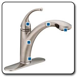 Forte Pullout Kitchen Sink Faucet
