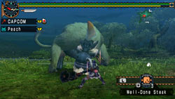 Fighting along side the felyne AI companion in 'Monster Hunter Freedom Unite'