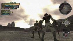 2-person online multiplayer on the Wii in 'Valhalla Knights: Eldar Saga'