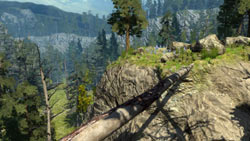 A bridge made by a fallen tree that must be crossed to track animals in 'Cabela's Big Game Hunter 2010'