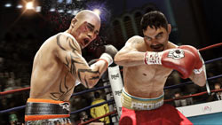 Manny Pacquiao hammering Miquel Coto with a right hand in Fight Night Champion