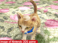 Petting your pet kitty in Nintendogs   Cats: Golden Retriever and New Friends