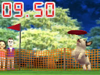A French Bulldog competing in an event in Nintendogs   Cats: Golden Retriever and New Friends