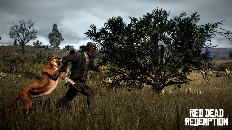 http://g-ecx.images-amazon.com/images/G/01/videogames/detail-page/red.dead.redemption.03.lg.jpg