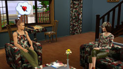 Extreme home customization in 'The Sims 3'