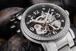 Stuhrling Women's Delphi Automatic Watch