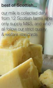 Scottish cheese