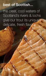 Scottish trout