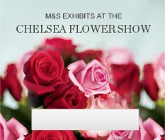 Chelease Flower Show