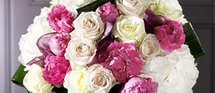 Flowers - Beautiful Bouquets