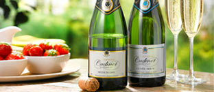 Wine - Award-Winning Champagne