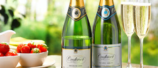 Wine - Award-winning champagnes