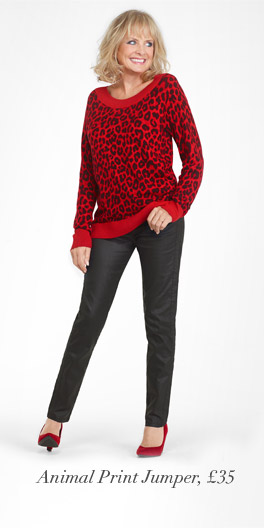 Animal Print Jumper, £35
