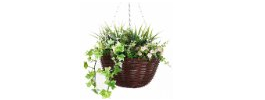 Hanging Planters & Baskets