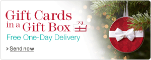 Christmas Gift Cards with Free One_Day Delivery