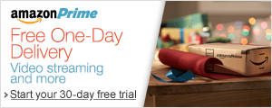 Amazon Prime--Unlimited One-Day Delivery and more