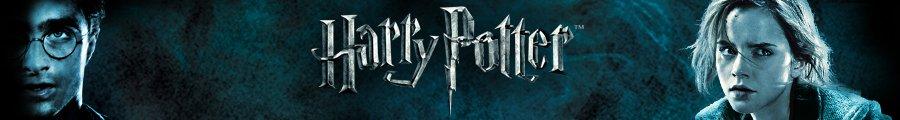 Harry Potter Store--Shop now