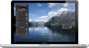 The 17-inch MacBook Pro uses the NVIDIA GeForce 330M integrated graphics processor