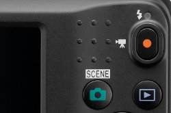 Picture shows a close-up of the dedicated movie-record button on the rear of the camera.