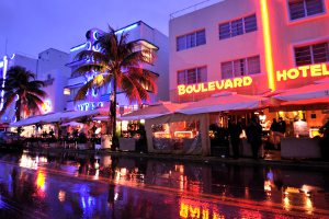 Picture shows a row of Miami wine bars brightly lit with neon lights in the evening light.